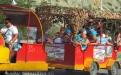 Благоустроенный спуск к пляжу 40 лет Победы - паровозик